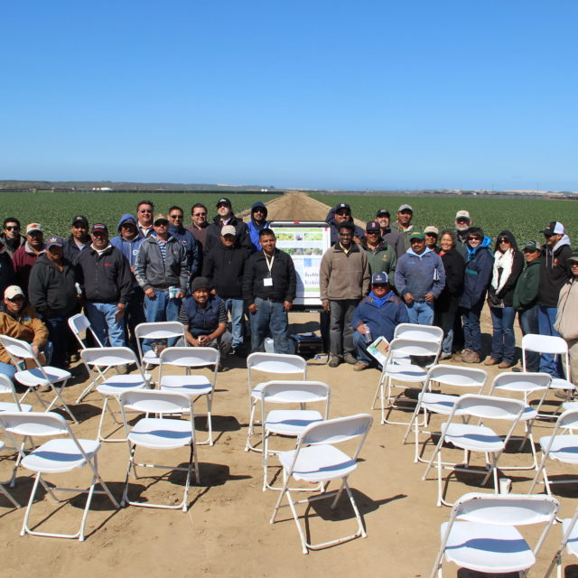 Agricultural producers standing in strawberry field after a workshop