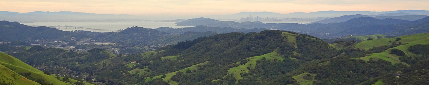Landscape photo of the Bay Area with hills and city in the distance