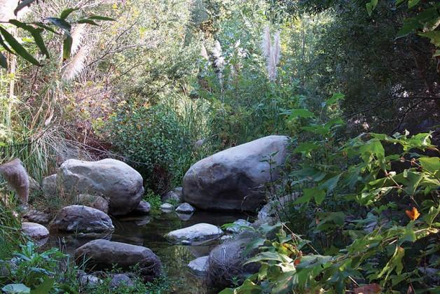 Scenic creek spot