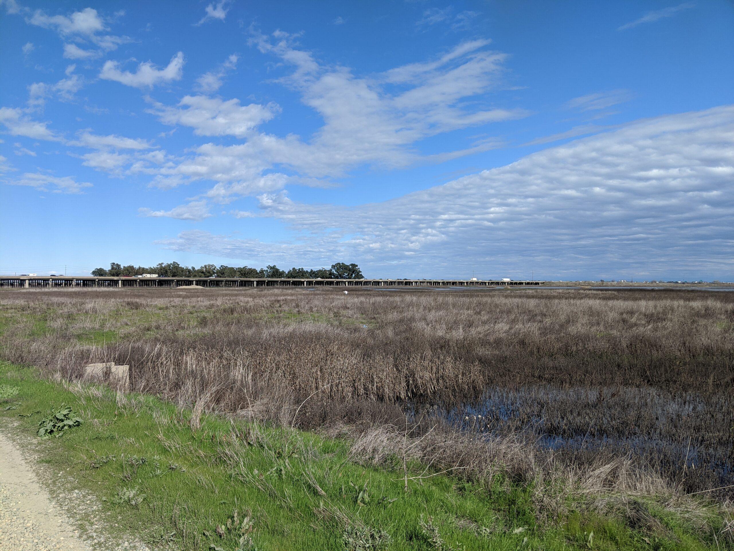 Yolo Bypass Wildlife Area and I-80